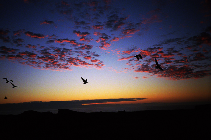 http://dennisduijnhouwer.com/files/gimgs/69_oregon-sunset03b.jpg