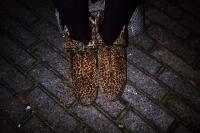107_panther-schoenen01b.jpg
