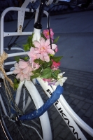 126_never-wither-fiets204b.jpg