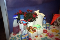 57_57shell-fake-plant01b.jpg