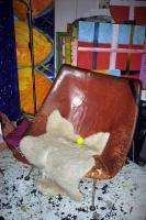 61_chair01b.jpg