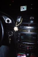 95_weed-taxi01b.jpg